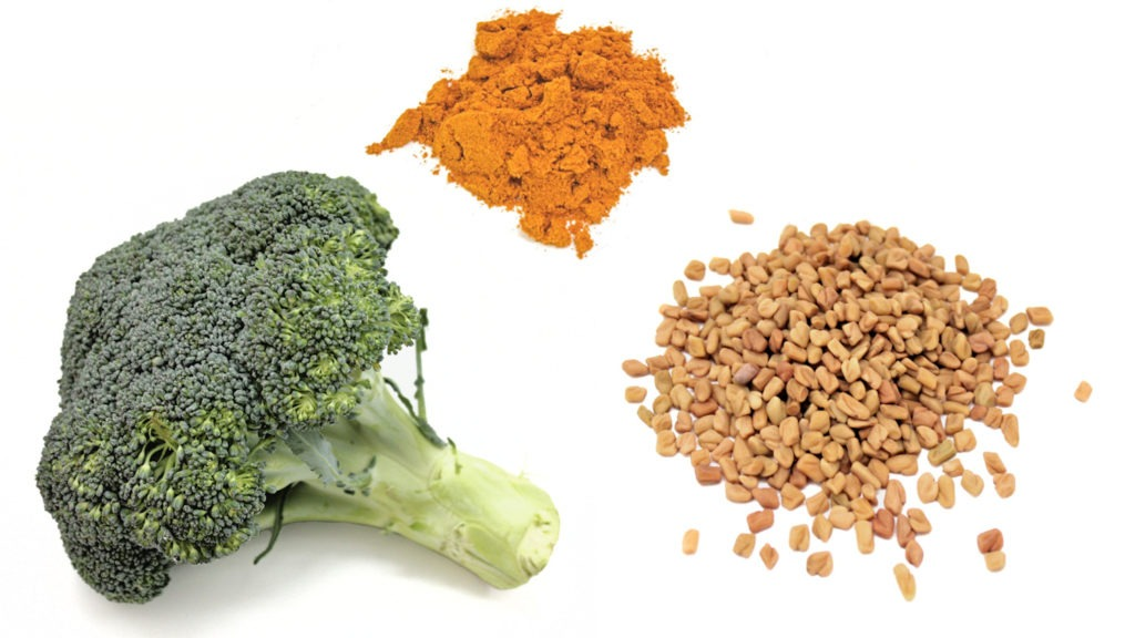 Trio of Natural Ingredients in Our Protein Products